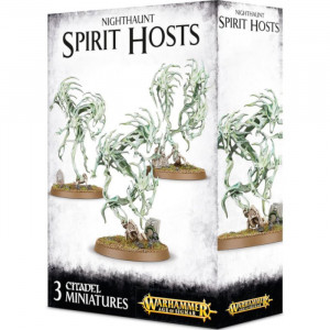 Boite de Age of Sigmar: Nighthaunt - Spirit Hosts