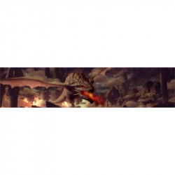 Mournblade - Ecran + Carte Jeunes Royaumes