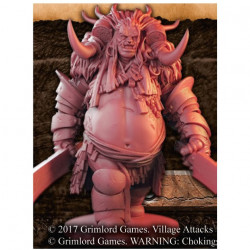 Village Attacks : The Troll (VF)