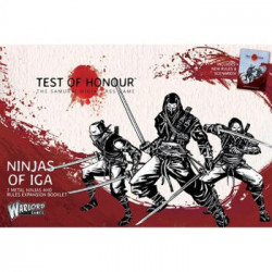 Test of Honour - Ninja of Iga