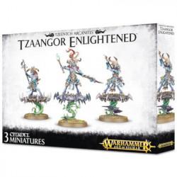 Age of Sigmar - Tzeentch Arcanites: Tzaangors...
